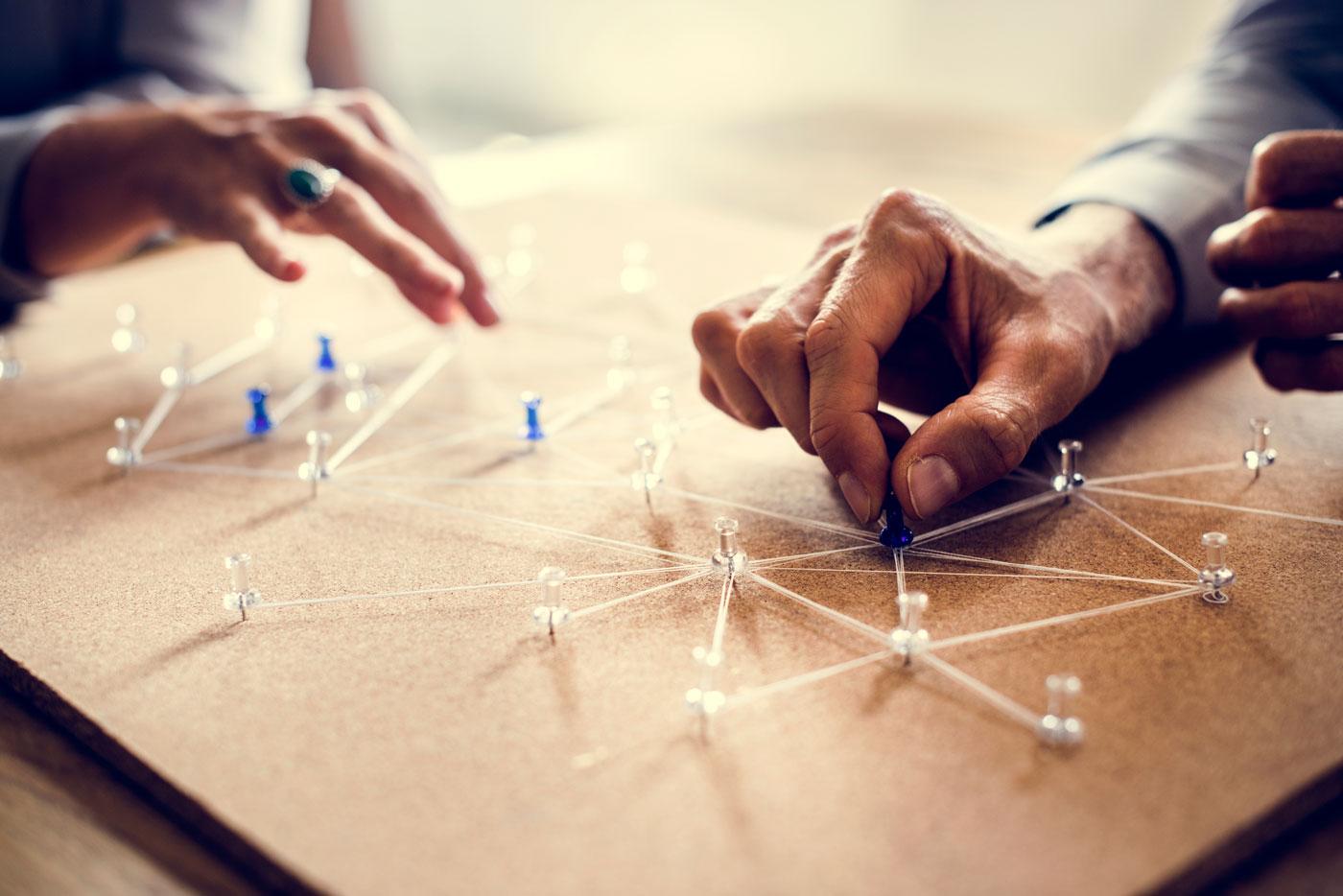 B. Managementul tranziției în carieră în interiorul organizației tale